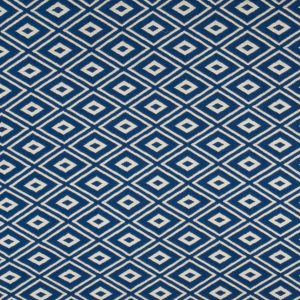 maze blueberry
