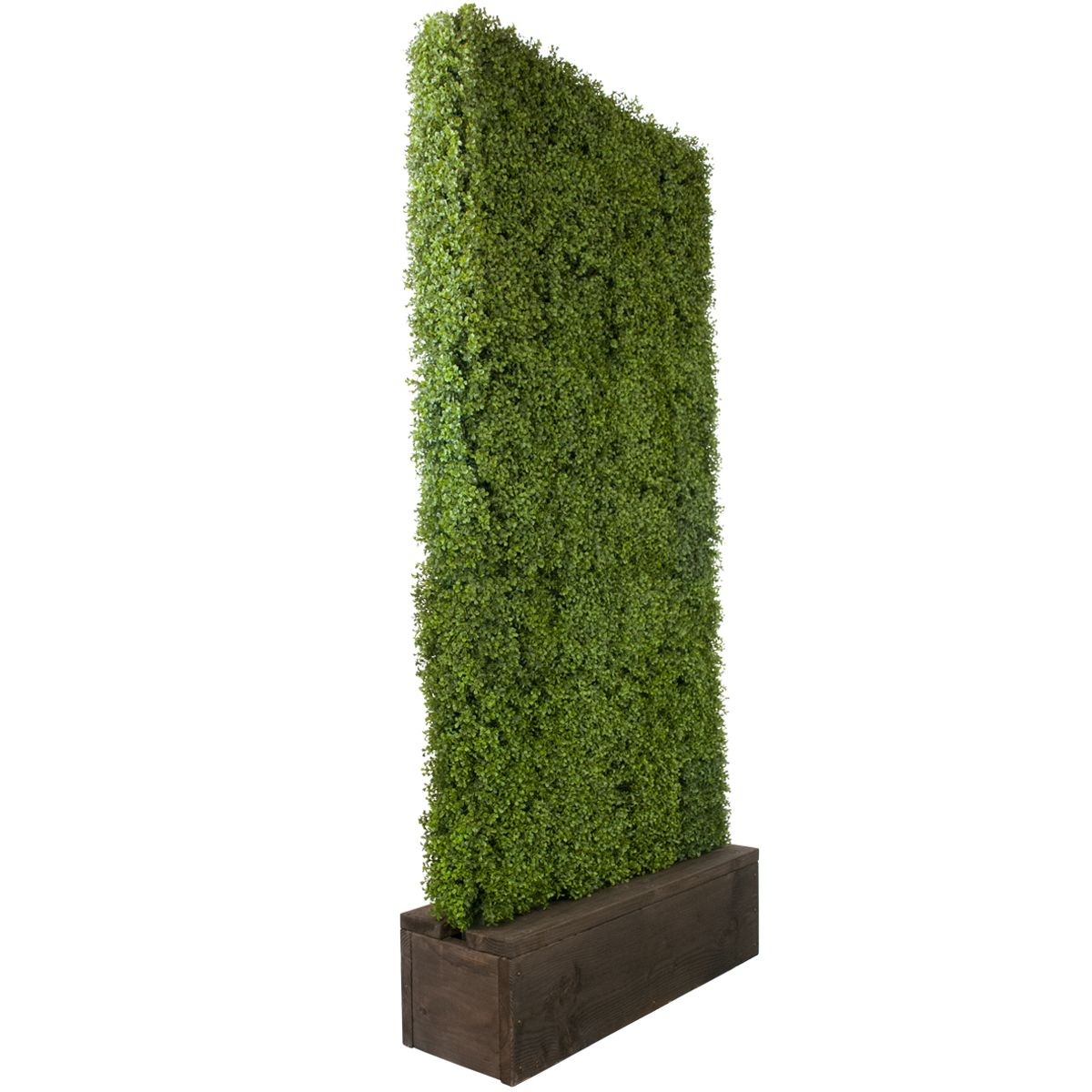 Artificial Boxwood Hedge Celebrations Party Rentals
